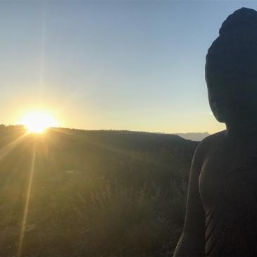 Buddha at Tara Mandala